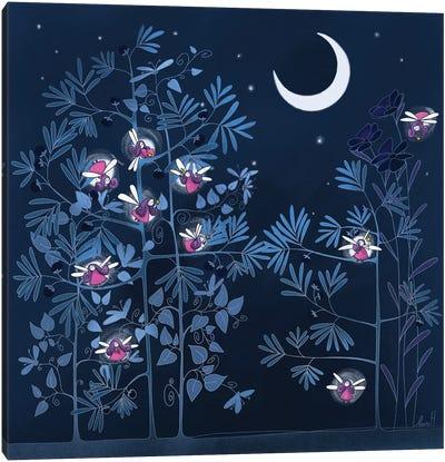 Night Garden Canvas Art Print