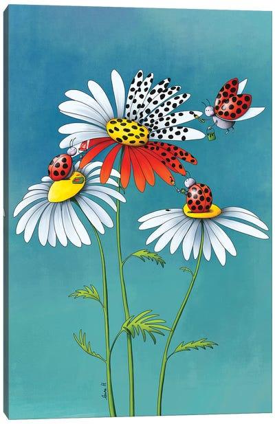 Daisies And Ladybugs Canvas Art Print