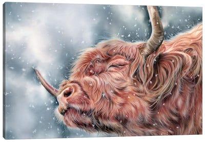 Brave The Storm Canvas Art Print