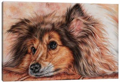 Susie Canvas Art Print
