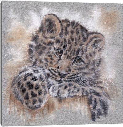 Amur Leopard Tonal Study Canvas Art Print
