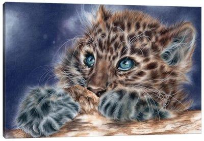 Scaredy Cat II Canvas Art Print