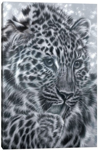 In Sight Canvas Art Print