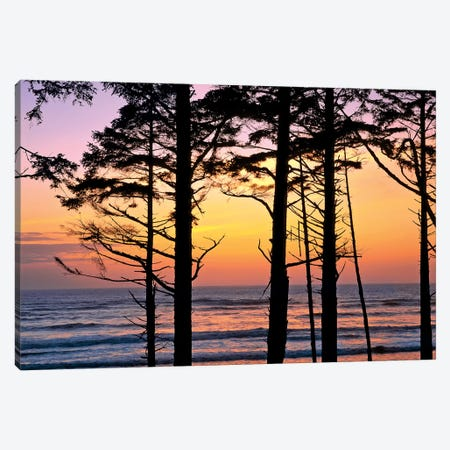 Colorful Sunset, Ruby Beach, Olympic National Park, Washington, USA Canvas Print #RER2} by Ric Ergenbright Art Print