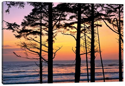 Colorful Sunset, Ruby Beach, Olympic National Park, Washington, USA Canvas Art Print