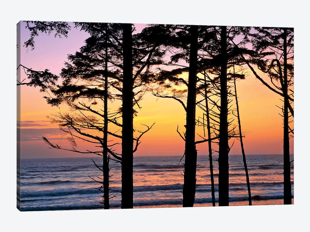 Colorful Sunset, Ruby Beach, Olympic National Park, Washington, USA 1-piece Art Print