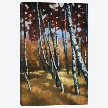Sunburst Canvas Print #REY14} by Graham Reynolds Canvas Artwork