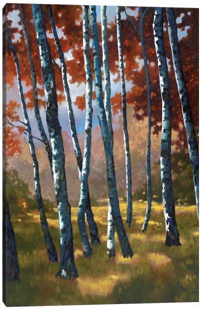 Sundance Canvas Art Print