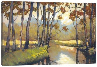 Trout Stream I Canvas Art Print
