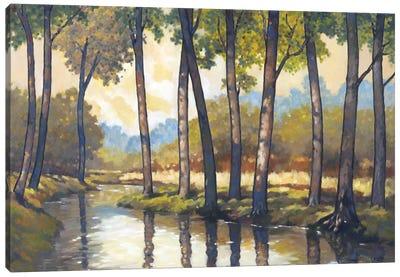 Trout Stream II Canvas Art Print