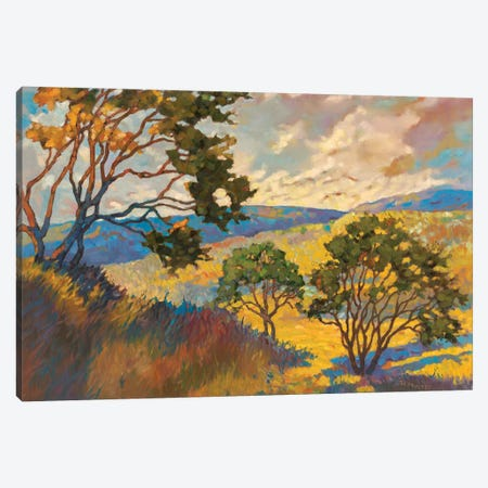 Wide horizons I Canvas Print #REY18} by Graham Reynolds Canvas Art Print