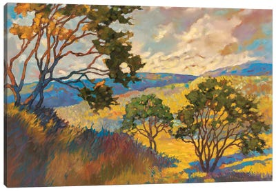 Wide horizons I Canvas Art Print