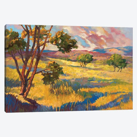 Wide horizons II Canvas Print #REY19} by Graham Reynolds Art Print