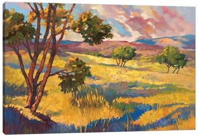 Wide horizons II Canvas Art Print