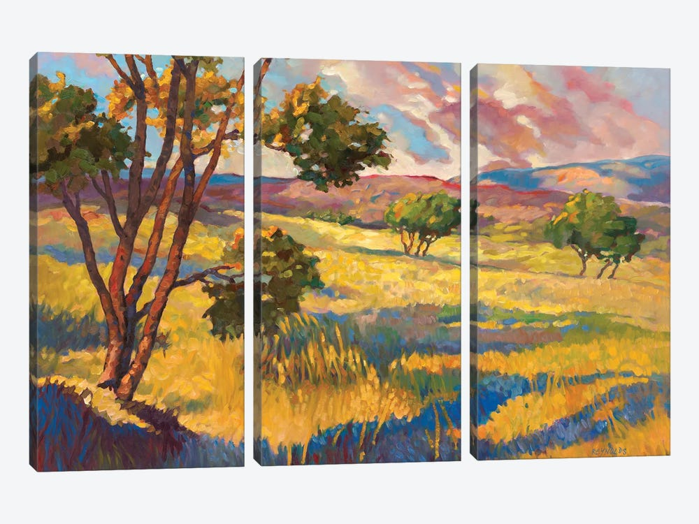 Wide horizons II by Graham Reynolds 3-piece Canvas Wall Art