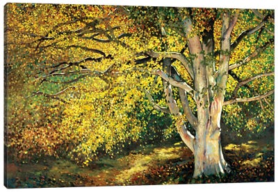 Golden Light I Canvas Print #REY1