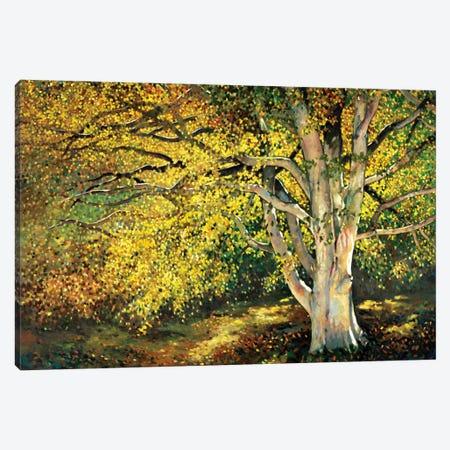 Golden Light I Canvas Print #REY1} by Graham Reynolds Canvas Art