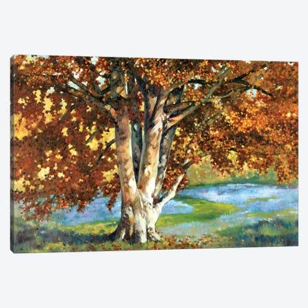 Golden Light II Canvas Print #REY2} by Graham Reynolds Canvas Art