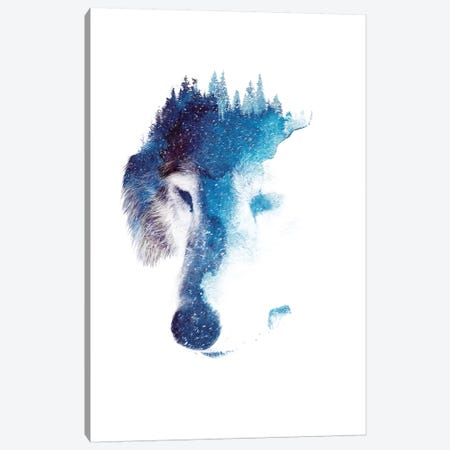 Through Many Storms Canvas Print #RFA13} by Robert Farkas Art Print