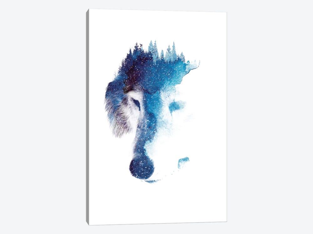 Through Many Storms by Robert Farkas 1-piece Canvas Artwork