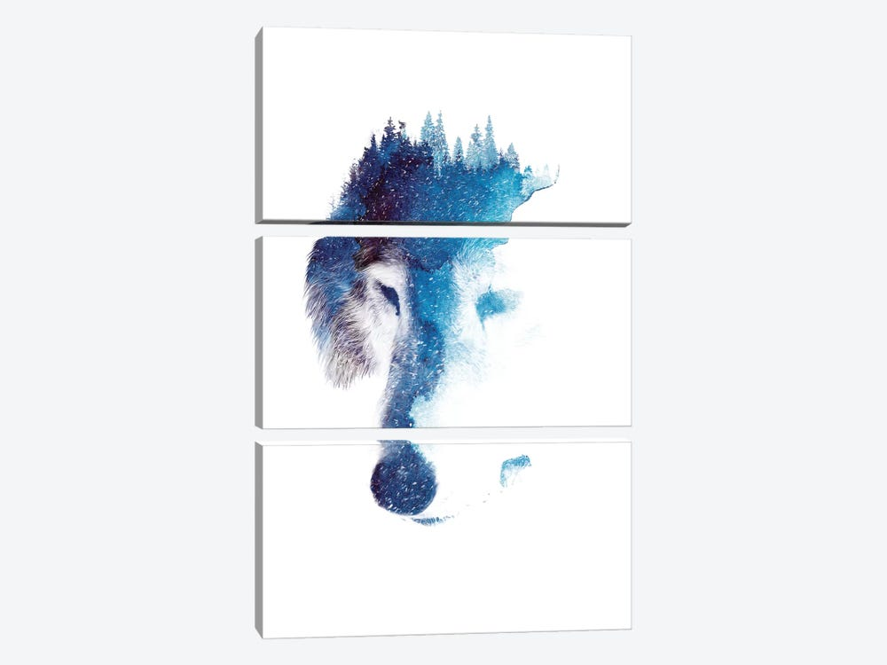 Through Many Storms by Robert Farkas 3-piece Canvas Wall Art