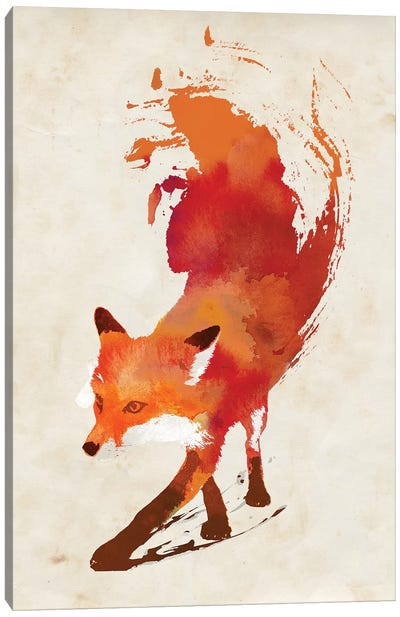 Vulpes Vulpes Canvas Art Print