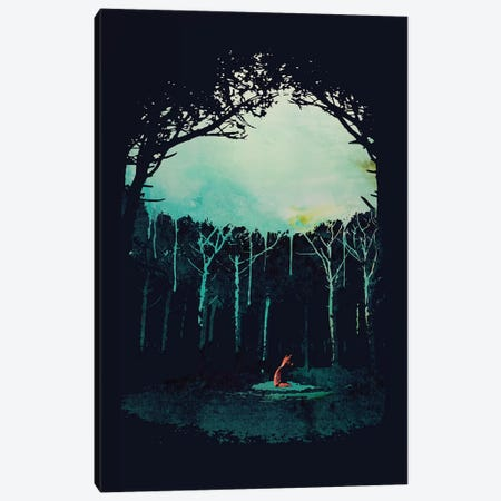 Deep In The Forest Canvas Print #RFA25} by Robert Farkas Canvas Art Print