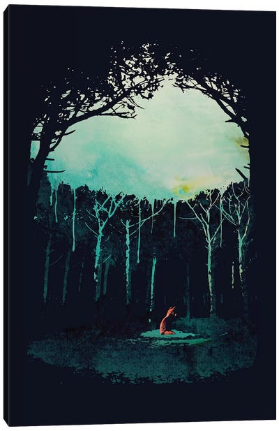 Deep In The Forest Canvas Art Print