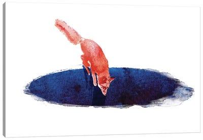 Jump Into Nowhere Canvas Art Print