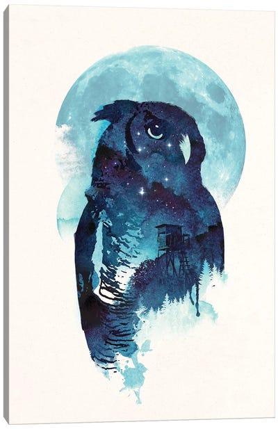 Midnight Owl Canvas Art Print
