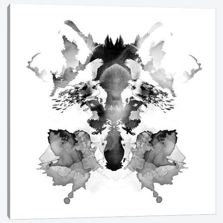 Rorschach Canvas Print #RFA38} by Robert Farkas Art Print