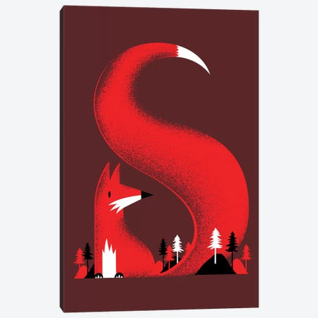 S Like A Fox Canvas Print #RFA39} by Robert Farkas Canvas Art Print