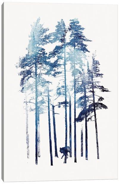 Winter Wolf Canvas Art Print