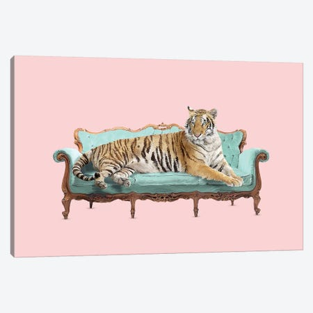 Lazy Tiger Canvas Print #RFA58} by Robert Farkas Art Print