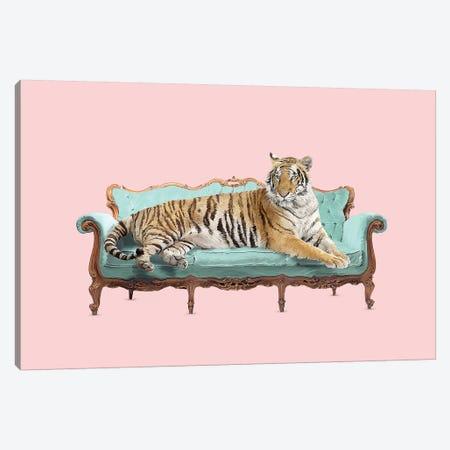 Lazy Tiger Canvas Print #RFA58} by Robert Farkas Art Print