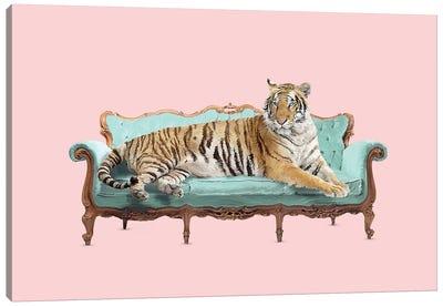 Lazy Tiger Canvas Art Print