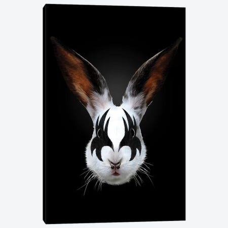 Rabbit Rocks Canvas Print #RFA9} by Robert Farkas Canvas Artwork