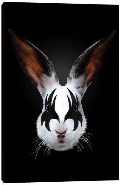 Rabbit Rocks Canvas Art Print