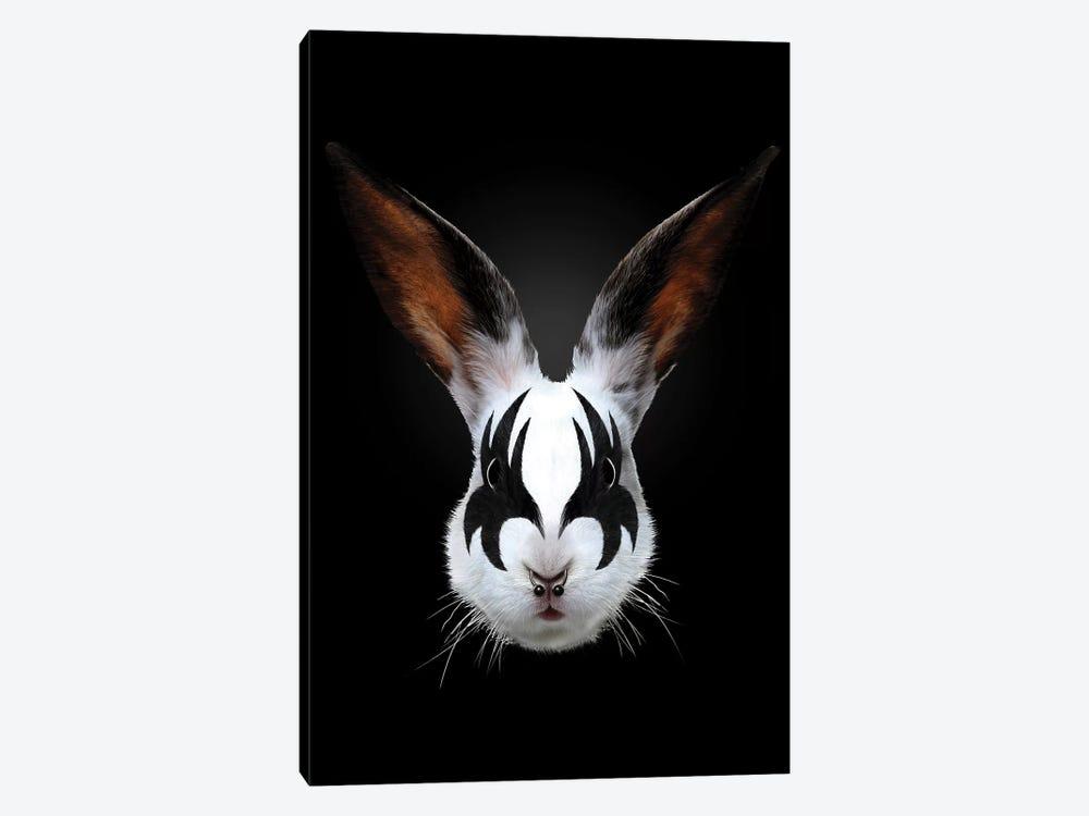 Rabbit Rocks by Robert Farkas 1-piece Canvas Print