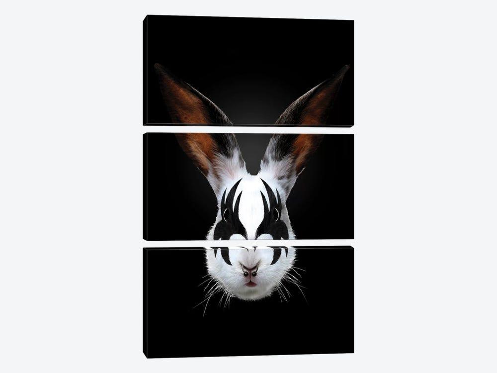 Rabbit Rocks by Robert Farkas 3-piece Canvas Print