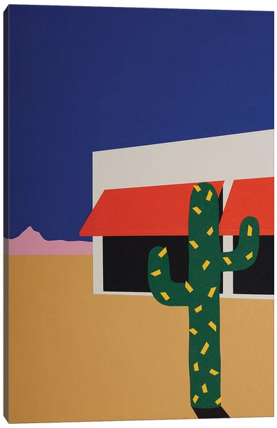 Boutique With Cactus Canvas Art Print