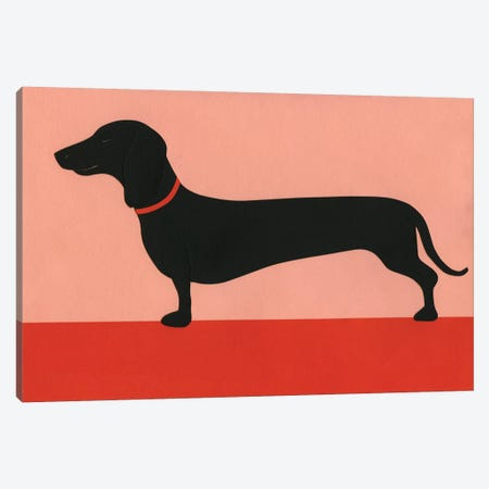 Dachshund Rosi Canvas Print #RFE23} by Rosi Feist Canvas Art