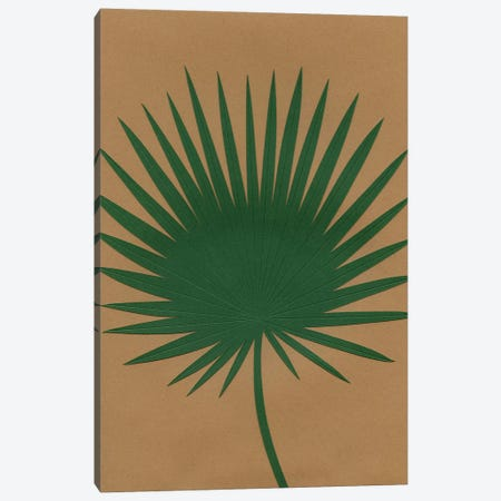 Fan Palm 3-Piece Canvas #RFE34} by Rosi Feist Canvas Artwork