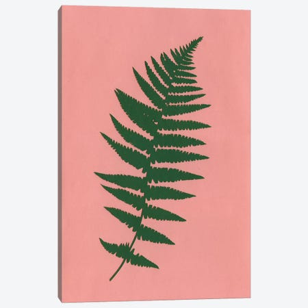 Fern Canvas Print #RFE35} by Rosi Feist Canvas Wall Art