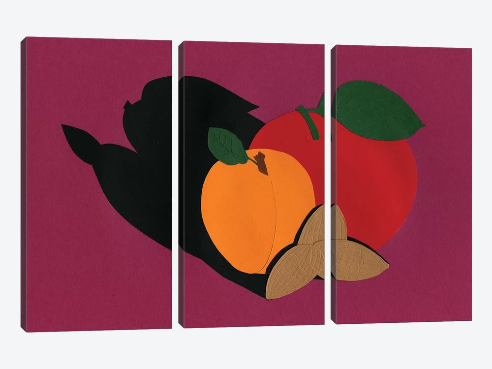 Apple Apricot Almond by Rosi Feist 3-piece Canvas Art