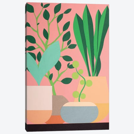 Plants And Pottery 3-Piece Canvas #RFE78} by Rosi Feist Canvas Print