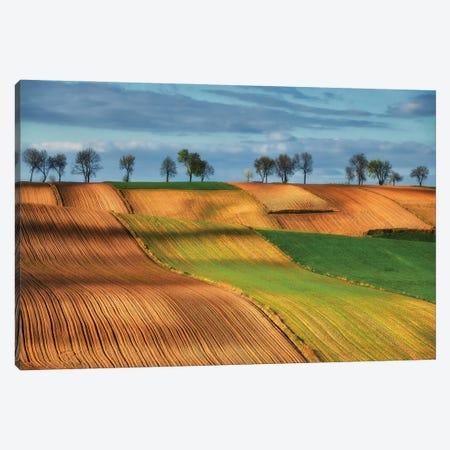 Undulating Fields Ponidzie- Poland Canvas Print #RFL153} by Rafal Kaniszewski Canvas Art Print