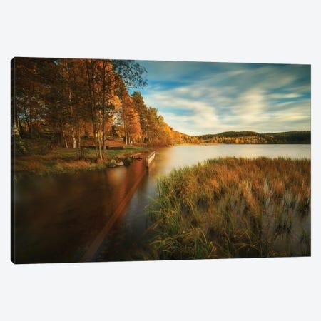 Autumn In Norway Canvas Print #RFL170} by Rafal Kaniszewski Canvas Print