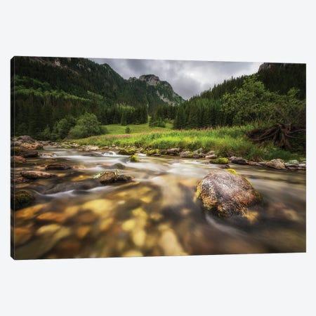 Koscieliska Valley -Zakopane/ Poland Canvas Print #RFL185} by Rafal Kaniszewski Canvas Art Print