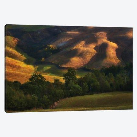 Tuscany Fields In The Lights - Italy Canvas Print #RFL195} by Rafal Kaniszewski Canvas Artwork